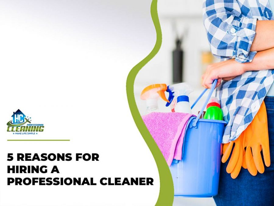 Hire Professional Cleaner in the Hills District